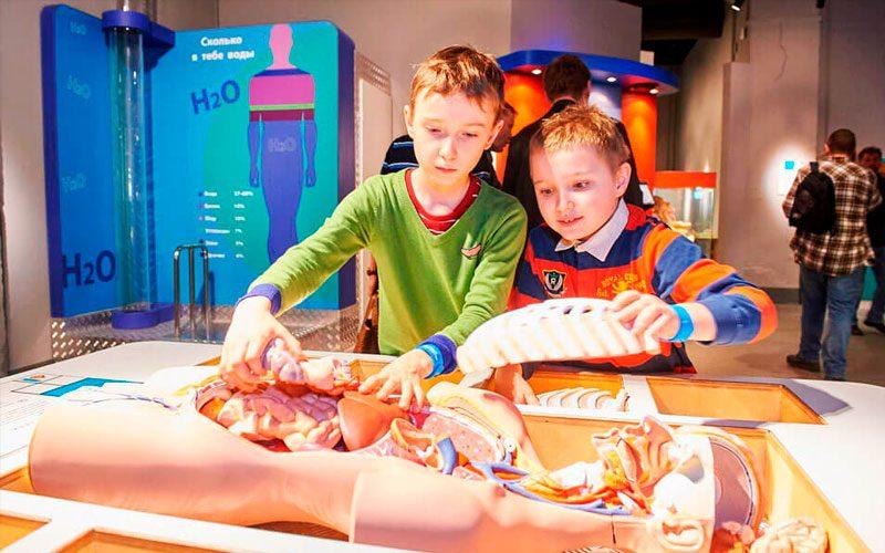 Дети в музее живые системы